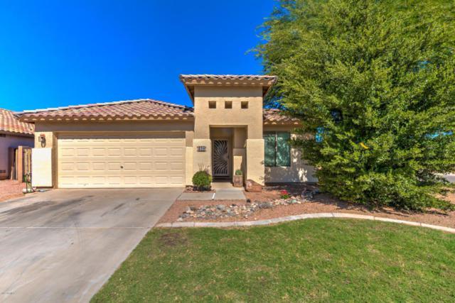 276 W Dexter Way, San Tan Valley, AZ 85143 (MLS #5676778) :: Kelly Cook Real Estate Group