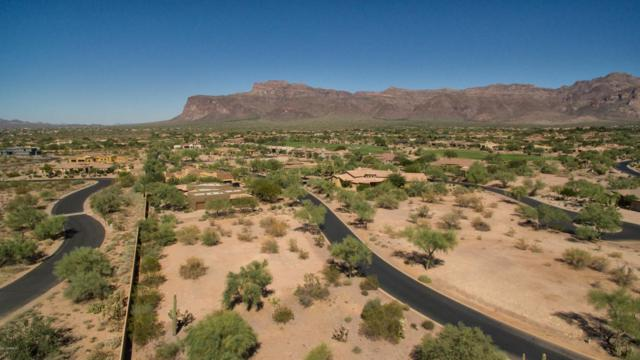 3756 S Ponderosa Drive, Gold Canyon, AZ 85118 (MLS #5676844) :: Yost Realty Group at RE/MAX Casa Grande