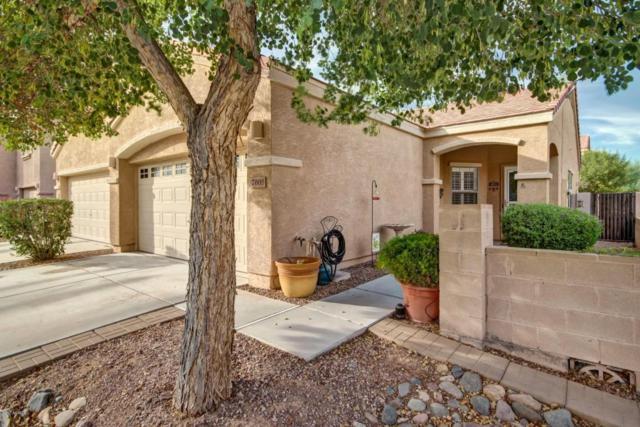 7008 W Cesar Street, Peoria, AZ 85345 (MLS #5676849) :: Brett Tanner Home Selling Team