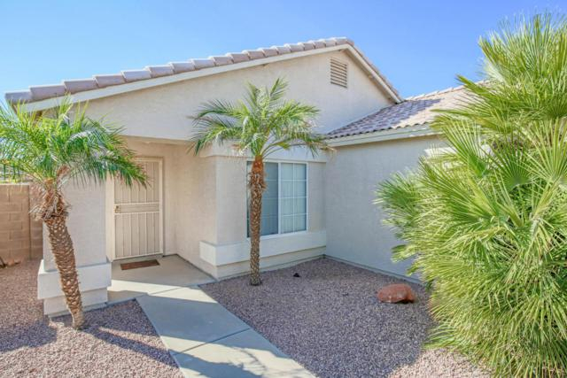 3609 W Tina Lane, Glendale, AZ 85310 (MLS #5676916) :: Occasio Realty