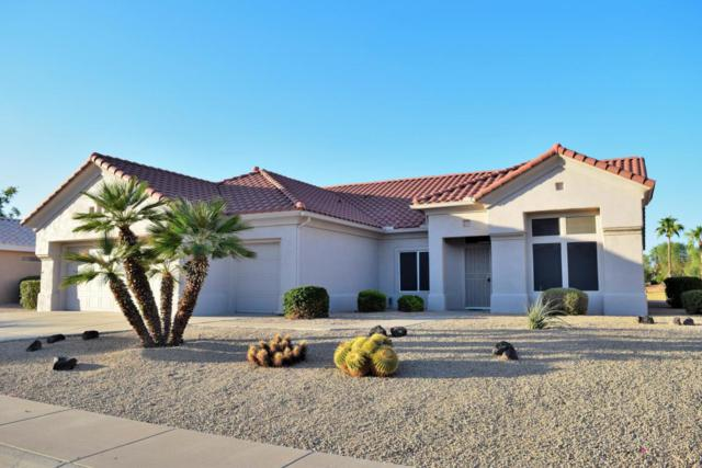 14134 W Robertson Drive, Sun City West, AZ 85375 (MLS #5676978) :: Kelly Cook Real Estate Group