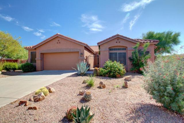 4765 S Jalapa Lane, Gold Canyon, AZ 85118 (MLS #5676999) :: The Pete Dijkstra Team