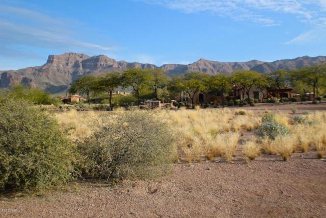 7291 E Cottonwood Drive, Gold Canyon, AZ 85118 (MLS #5677019) :: The Pete Dijkstra Team
