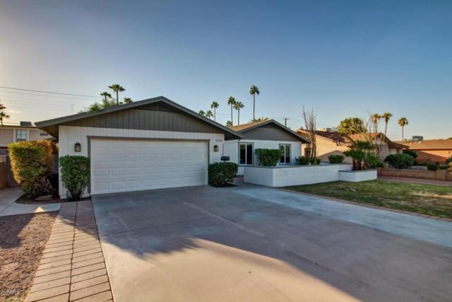 2226 S Kachina Drive, Tempe, AZ 85282 (MLS #5677032) :: Brett Tanner Home Selling Team