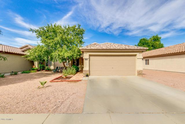 11930 W Bloomfield Road, El Mirage, AZ 85335 (MLS #5677086) :: Kelly Cook Real Estate Group