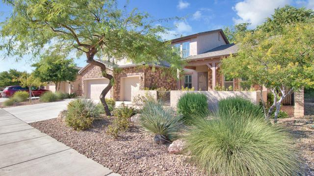 12316 W Dove Wing Way, Peoria, AZ 85383 (MLS #5677135) :: Occasio Realty