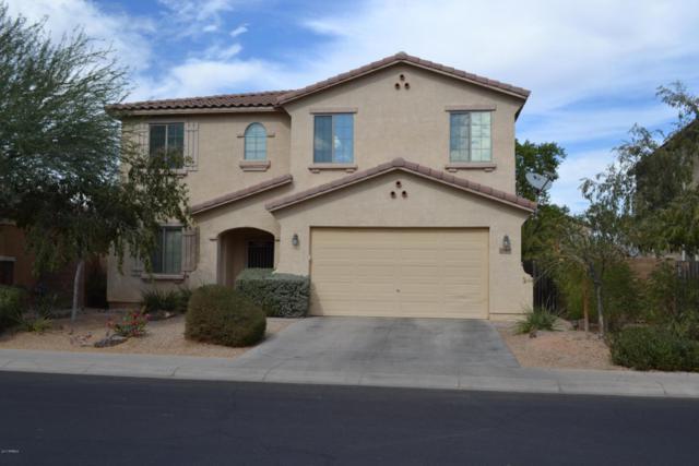 43496 W Knauss Drive, Maricopa, AZ 85138 (MLS #5677142) :: The Pete Dijkstra Team