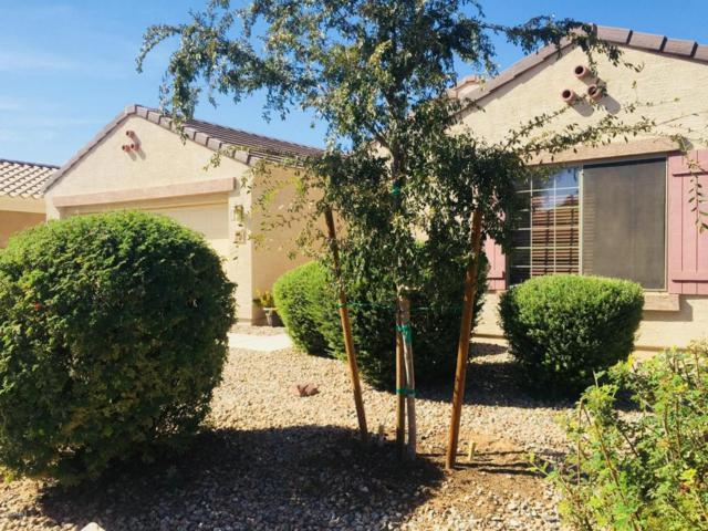 37118 W Giallo Lane, Maricopa, AZ 85138 (MLS #5677183) :: The Pete Dijkstra Team
