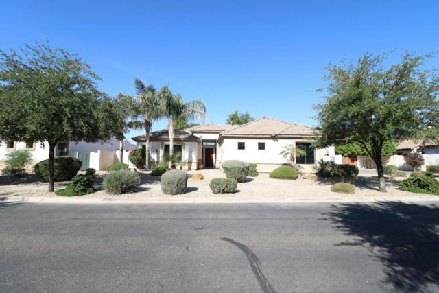 2388 N 143RD Drive, Goodyear, AZ 85395 (MLS #5677192) :: Brett Tanner Home Selling Team