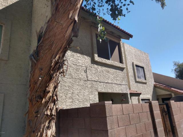 222 W Brown Road #53, Mesa, AZ 85201 (MLS #5677247) :: Brett Tanner Home Selling Team
