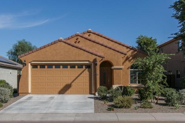 20531 N 260TH Lane, Buckeye, AZ 85396 (MLS #5677256) :: Kelly Cook Real Estate Group