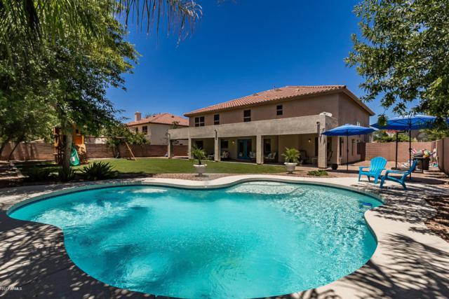 1431 E Horseshoe Drive, Chandler, AZ 85249 (MLS #5677267) :: Jablonski Real Estate Group