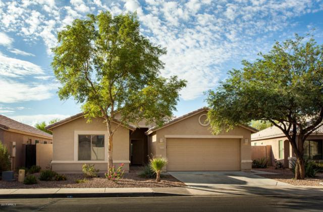 11163 W Del Rio Lane, Avondale, AZ 85323 (MLS #5677269) :: Kelly Cook Real Estate Group