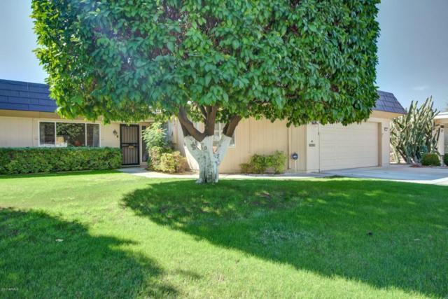 10447 W Loma Blanca Drive, Sun City, AZ 85351 (MLS #5677273) :: Essential Properties, Inc.