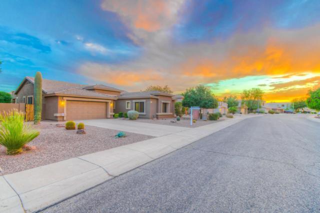 6763 W Abraham Lane, Glendale, AZ 85308 (MLS #5677297) :: Brett Tanner Home Selling Team