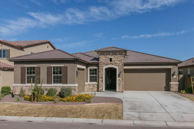 7972 W Rock Springs Drive, Peoria, AZ 85383 (MLS #5677298) :: Occasio Realty