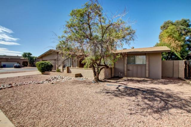 4830 S Kachina Drive, Tempe, AZ 85282 (MLS #5677322) :: Brett Tanner Home Selling Team