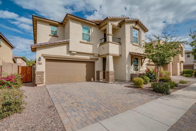 3000 E Shannon Street, Gilbert, AZ 85295 (MLS #5677327) :: Jablonski Real Estate Group