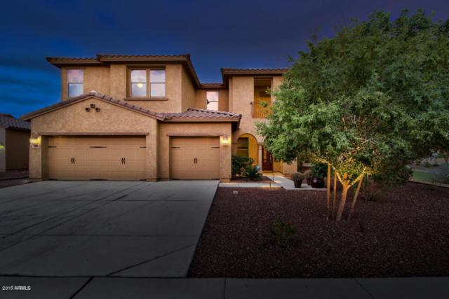 9185 W Pinnacle Vista Drive, Peoria, AZ 85383 (MLS #5677339) :: Occasio Realty