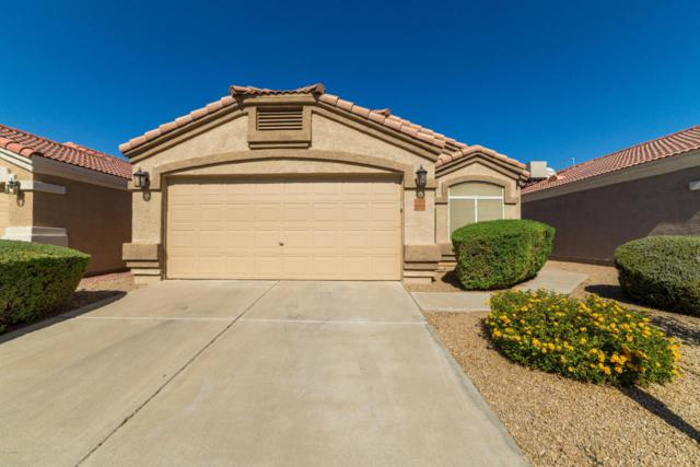 3028 E Blackhawk Drive, Phoenix, AZ 85050 (MLS #5677356) :: Brett Tanner Home Selling Team