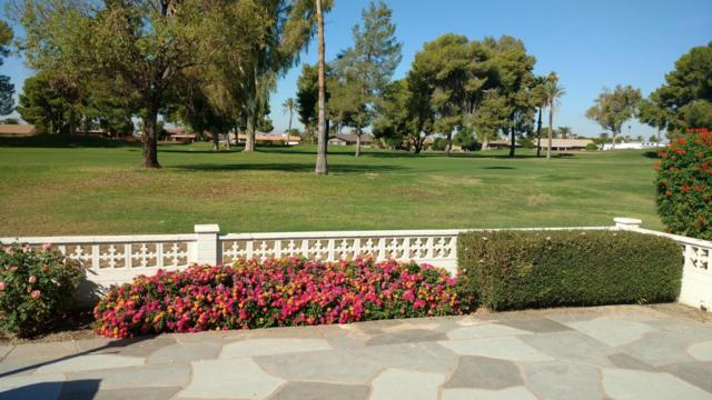 10936 W Cumberland Drive, Sun City, AZ 85351 (MLS #5677393) :: Essential Properties, Inc.