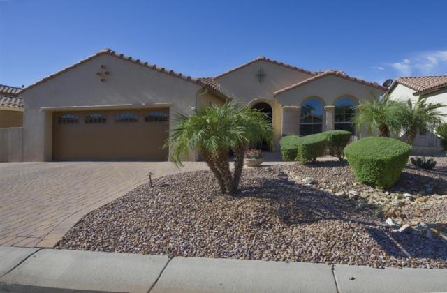 2438 N 163RD Drive, Goodyear, AZ 85395 (MLS #5677403) :: Occasio Realty