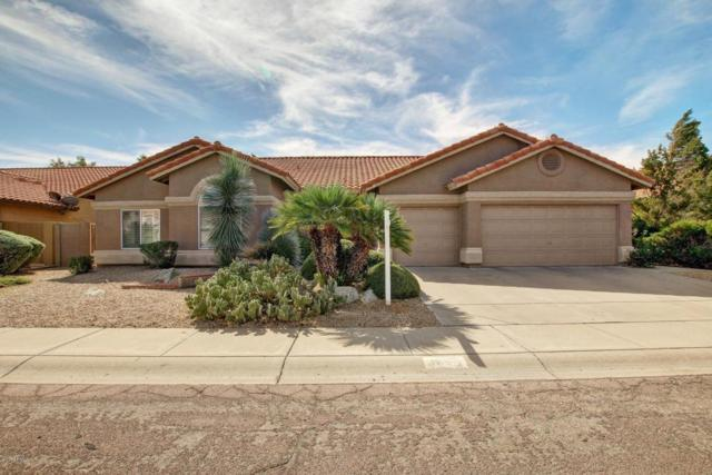 4629 E Evans Drive E, Phoenix, AZ 85032 (MLS #5677405) :: Arizona Best Real Estate