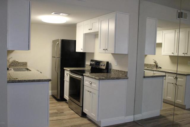 1115 N 84TH Place, Scottsdale, AZ 85257 (MLS #5677412) :: Arizona Best Real Estate