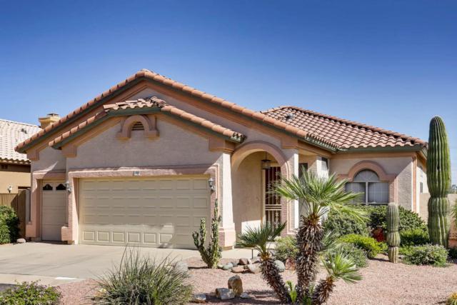 11663 W Cholla Court, Surprise, AZ 85378 (MLS #5677414) :: Kelly Cook Real Estate Group