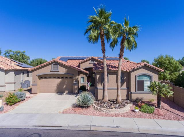 17812 W Buena Vista Drive, Surprise, AZ 85374 (MLS #5677434) :: Kelly Cook Real Estate Group