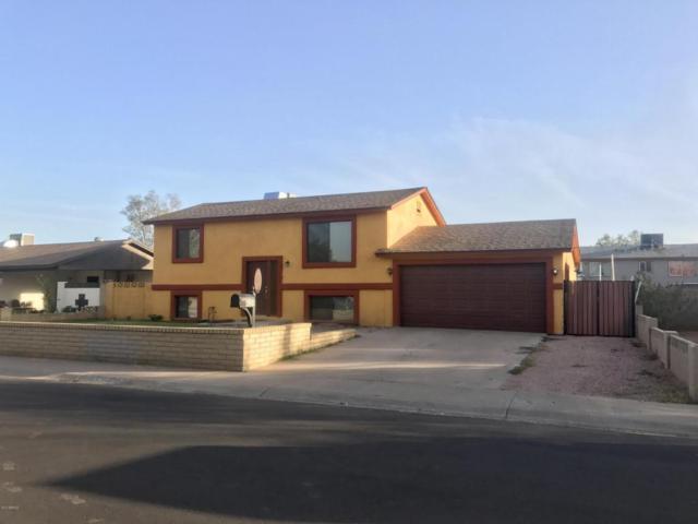 4359 E Lynne Lane, Phoenix, AZ 85042 (MLS #5677436) :: Arizona Best Real Estate