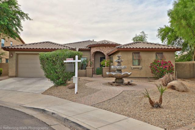 3350 S Holguin Way, Chandler, AZ 85248 (MLS #5677451) :: Occasio Realty