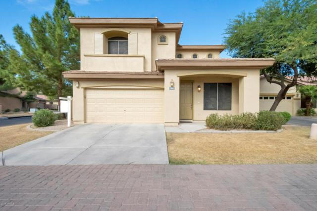 1882 W Olive Way, Chandler, AZ 85248 (MLS #5677464) :: Occasio Realty