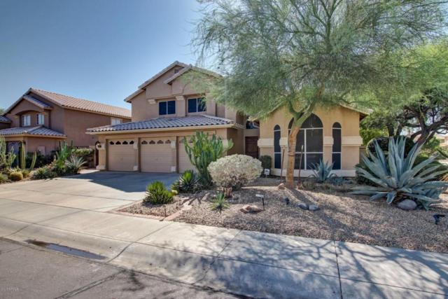 6575 W Melinda Lane, Glendale, AZ 85308 (MLS #5677471) :: The Laughton Team