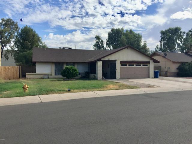1813 N Apache Drive, Chandler, AZ 85224 (MLS #5677488) :: Kelly Cook Real Estate Group