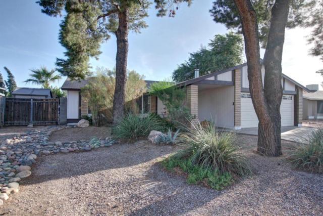 1411 W El Alba Way, Chandler, AZ 85224 (MLS #5677500) :: Occasio Realty