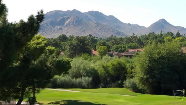 4303 E Cactus Road #439, Phoenix, AZ 85032 (MLS #5677514) :: The Pete Dijkstra Team