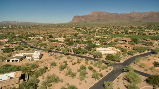 3304 S Ponderosa Drive, Gold Canyon, AZ 85118 (MLS #5677532) :: Yost Realty Group at RE/MAX Casa Grande