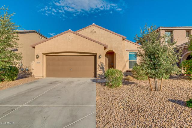 4429 S Antonio Circle, Mesa, AZ 85212 (MLS #5677533) :: Kelly Cook Real Estate Group
