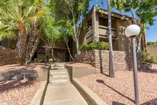 3825 E Camelback Road #245, Phoenix, AZ 85018 (MLS #5677539) :: The Pete Dijkstra Team