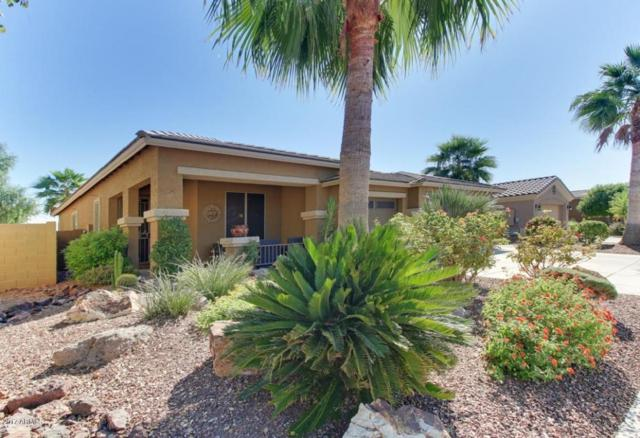 12921 N 175TH Drive, Surprise, AZ 85388 (MLS #5677572) :: Kelly Cook Real Estate Group