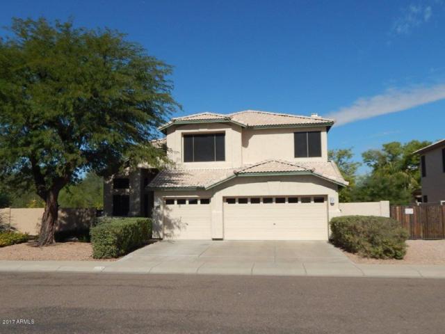 508 W Helena Drive, Phoenix, AZ 85023 (MLS #5677575) :: The AZ Performance Realty Team