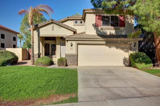 3424 S Felix Way, Chandler, AZ 85248 (MLS #5677580) :: Kelly Cook Real Estate Group