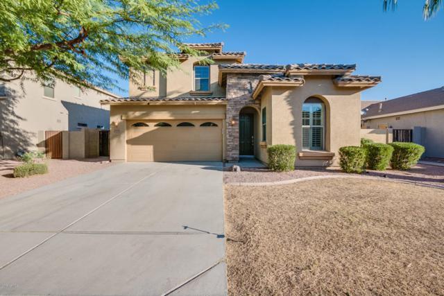 3370 E Merlot Street, Gilbert, AZ 85298 (MLS #5677582) :: Kelly Cook Real Estate Group