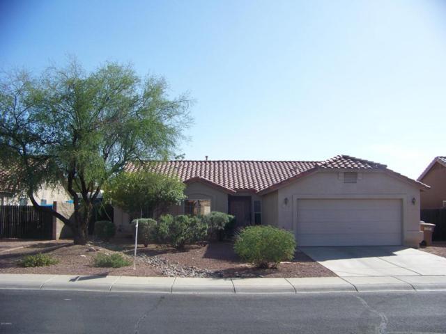 10839 W Deanna Drive, Sun City, AZ 85373 (MLS #5677595) :: Essential Properties, Inc.