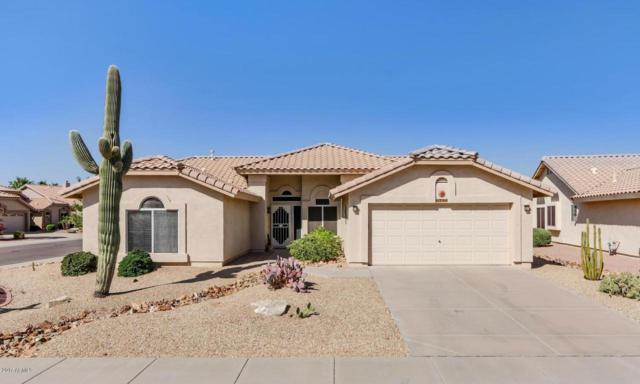 8788 W Sierra Pinta Drive, Peoria, AZ 85382 (MLS #5677615) :: Essential Properties, Inc.