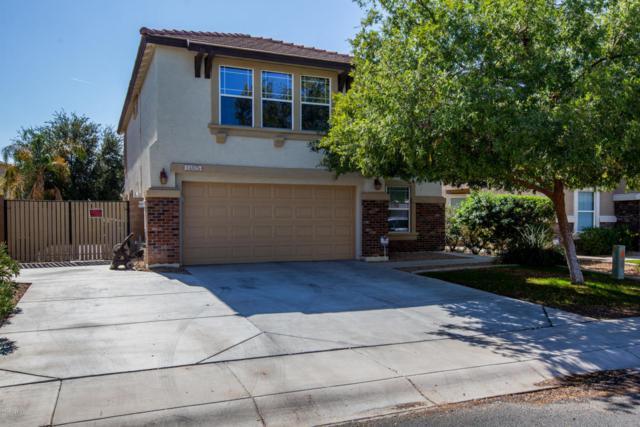 14825 W Columbine Drive, Surprise, AZ 85379 (MLS #5677660) :: The Laughton Team
