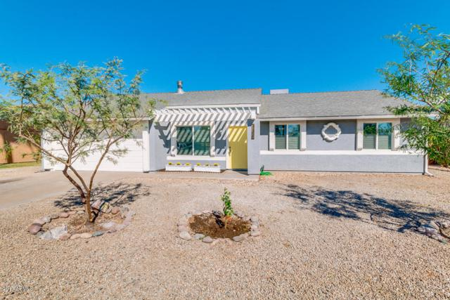 7132 W Cholla Street, Peoria, AZ 85345 (MLS #5677669) :: Essential Properties, Inc.