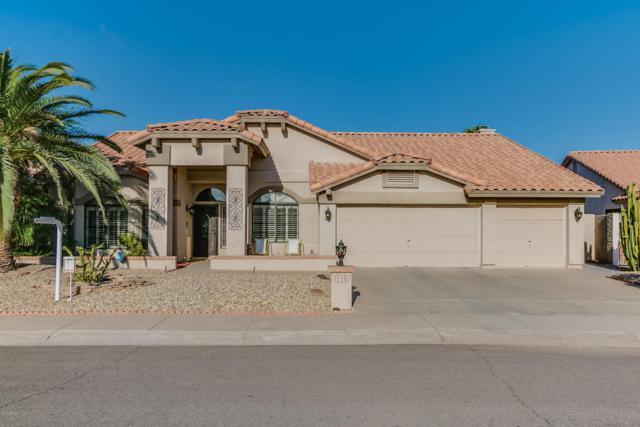 3019 N Meadow Lane, Avondale, AZ 85392 (MLS #5677745) :: Essential Properties, Inc.