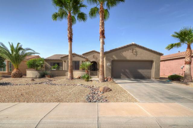16761 W Loma Verde Trail, Surprise, AZ 85387 (MLS #5677907) :: The Laughton Team
